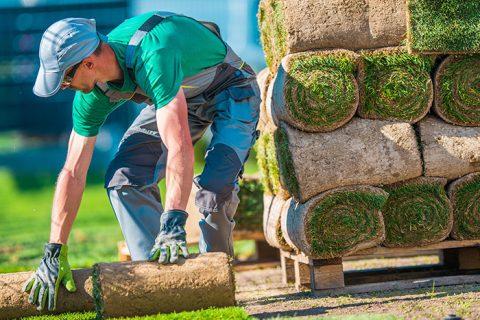 Landscaping Works